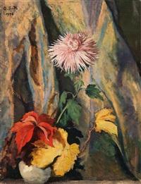 fiori by otto sohn-rethel