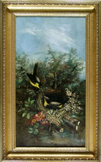 birds and blossoms by charles connor