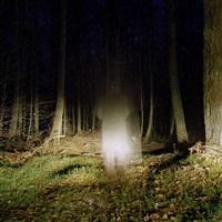 forêts n°2 by juliette agnel