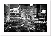 shibuya crossing by de angelis