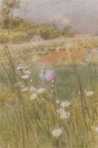 a field of daisies by minnie smythe