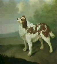a spaniel standing in a landscape by james hagarty