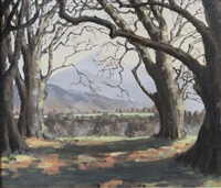 view of the sugar loaf by mabel young