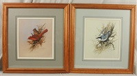 ornithological work (+ 3 others; set of 4) by gregory f. messier