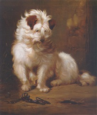 a long-haired terrier by hubert hennard