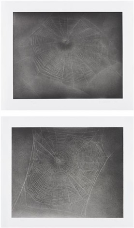 untitled web 3 and untitled web 4 2 works by vija celmins