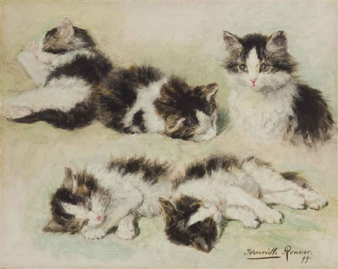 studies of kittens by henriette ronner knip