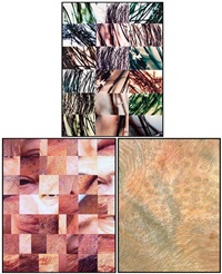 skin (10 works) (+ 6 others; 16 works) by ken gonzales-day