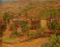 an olive grove in summer by stelios miliadis