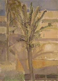 palm tree in a landscape by ofer lellouche