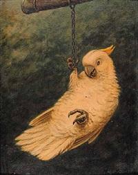untitled - parrot by marinus adrianus koekkoek the younger