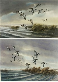 ducks in flight (+ another; pair) by gregory f. messier