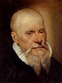 bildnis eines bärtigen mannes by romanino (girolamo romani)