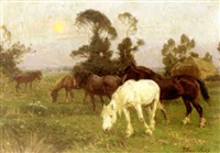 horses in a pasture at dawn by william evans linton