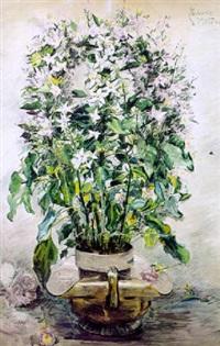fleurs en pot by zacharie astruc