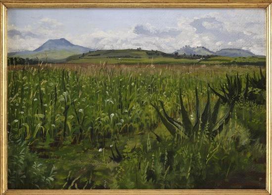 paisaje valle de toluca by carlos pellicer lopez