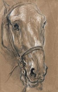 tête de cheval by charles parrocel