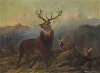 a stag and hinds in a landscape by byron webb
