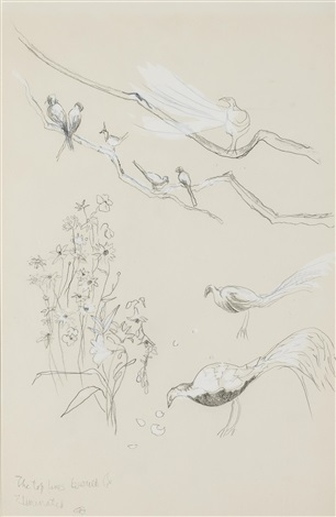 exotic birds in the tangier garden of the hon. david herbert by cecil beaton