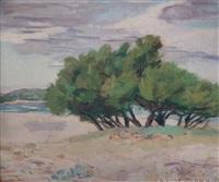 playa con arboles by carmelo de arzadún