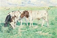 taureaux dans la campagne belge by victor abeloos