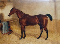 sickle, a favourite hunter in a box (+ a black thoroughbred; 2 works) by edward walter webb