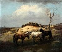 paarden in de duinen by fedor van kregten