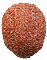 turtle shell by michael tuffery