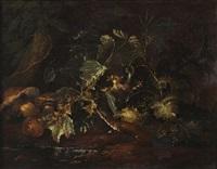 nature morte de sous-bois avec une belette by niccolino van houbraken