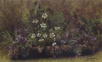 waldblumen by carl massmann