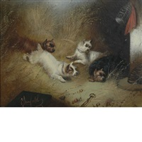 terriers ratting and lunch for three (2 works) by edward armfield