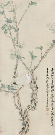 梨花鸠子图 (bird) by zhang daqian