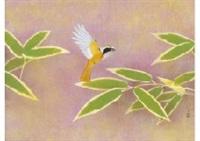 flycatcher by atsushi uemura