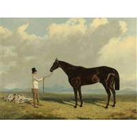 retriever, a liver chestnut being held by a groom by john wray snow