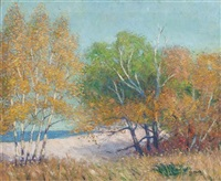lake michigan shoreline by george raab