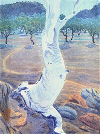 ghost gum, central australia by rex battarbee