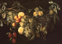 guirlande de fruits by cornelis mertens