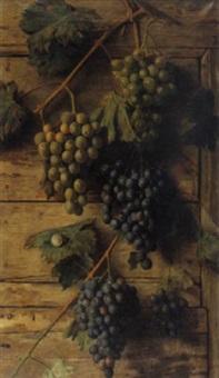 tralcio con grappoli d'uva by giovanni sandrucci