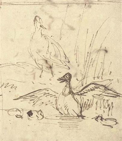two ducks and three ducklings (+ study of three chickens, verso) by anthonie van borssom
