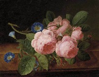 pink roses and morning glory on a ledge by l. toscan
