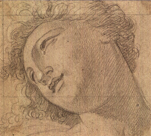 testa femminile by andrea appiani