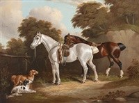 on the return from hunting by h. s. cottrell