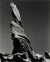 driftwood stump, crescent beach by edward weston