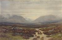 connemara mountain landscape by george drummond fish