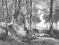 waldpartie auf der insel rügen by fanny assenbaum