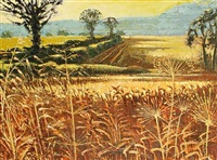the barley fields by alan cotton