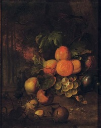 peaches, plums, grapes, medlars and nuts in a wooded clearing with a butterfly by jan mortel