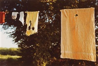 untitled (laundry line) by william eggleston