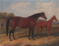 a mare and a foal by edith corbet