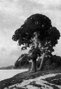 bäume im abendrot by carl kenzler